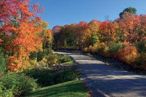 automne-canada-dtn